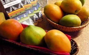 Mango-Tango: Termin 1 (April)